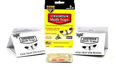 Pantry Moth Bird Seed Moth Pet Food Moth Traps (24 Traps) Indian Meal Moth Traps