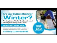 Gutter Cleaning ( Ready for Winter ?