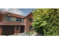 Stunning 4 Bedroom Detached To Rent