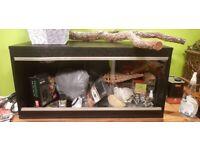 Black reptile vivarium size 86cm 42cm 38cm + accessories