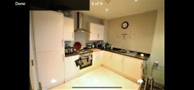 2 bedroom spacious apartment to rent