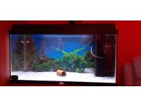 125 litre juwel fish tank with stand