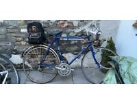 Men's Bike Raleigh Racer