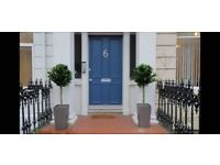 Huge 1 Bed Garden Flat (G4 West end), next to St Georges X subway