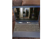Sony Vaio Laptop (PCG-71191M)
