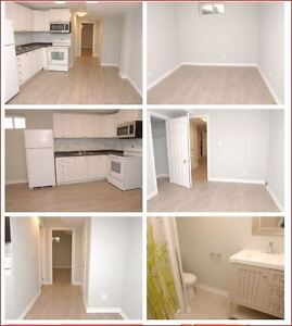 Brand New 1bd Basement Apartment for Rent in Luxury Area