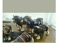 SHIRE HORSES AND CARTS