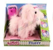 Fluffy Go Walkies