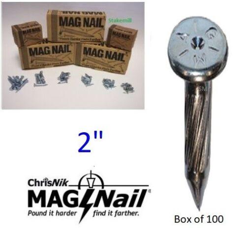 """ChrisNik MagNails 242000 Survey Mag Nails, 2"""" x 1/4"""" ~100 per box"""