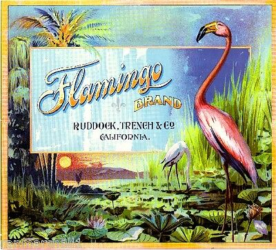 Los Angeles Flamingo Bird Orange Citrus Fruit Crate Label Vi
