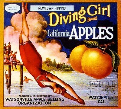 Watsonville original california apple crate label Madesko pajaro Valley