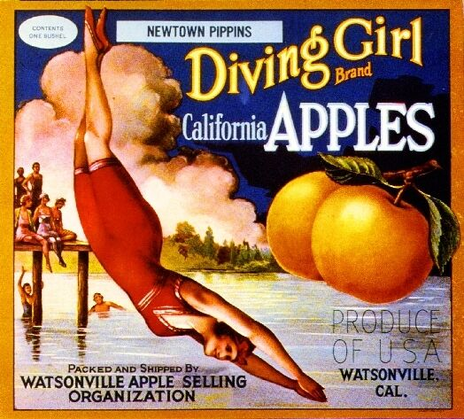 Watsonville Pajaro Valley California Diving Girl Apple Fruit Crate Label Print