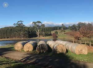 This years Hay Deloraine Meander Valley Preview