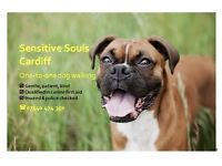 One-to-one dog walking & pet care, Cardiff. Caring, professional dog walker.