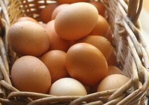 Eggs From Pasture Raised Hens $6.00/flat or $2.75/doz
