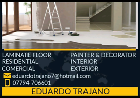 Professional painter and decorator and laminate flooring