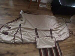 For Sale Flysheet