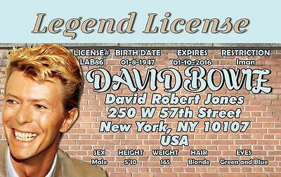 David Bowie Ziggy Stardust Costume (David Bowie ID Card Drivers License Ziggy Stardust Rock costume cosplay)