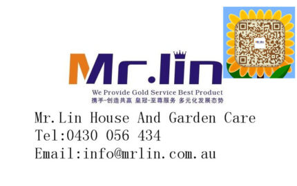 Mr.Lin Cleaning and Carpet clean services
