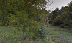 SMRT- Wooded and Treed property close to tons of waterfront!