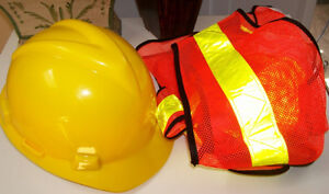 Safety Helmet MSA Super V and PIO Safety Vest and Glasses Set London Ontario image 1