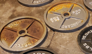 2 45lb Olympic Plates