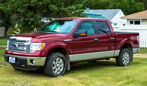 2014 Ford F-150 SuperCrew STX Pickup Truck