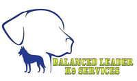 Balanced Leader K9 Services Experienced Dog Training