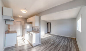 EAST - NEWLY RENOVATED -  2 BEDROOM APARTMENT - TOP FLOOR