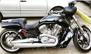 FAST and LOUD! 2011 Harley Davidson V-Rod Muscle. LOW km