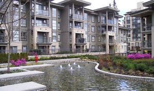 SFU CAMPUS - 2 BDRM - FULLY FURNISHED SEPT. 1, 2018