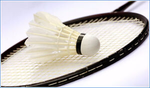 Badminton Coach for All Ages