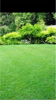 Lawn mowing + General Gardening + More