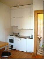 Sublet Studio Apartment for June - McGill Ghetto - $500 Flexible