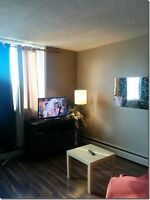 Cozy Bright Furnished Bachelor $45 daily Downtown area
