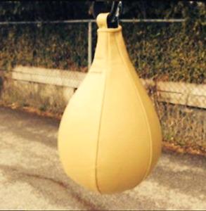 Ballon poire vaut 75 $ vent 30$ nego