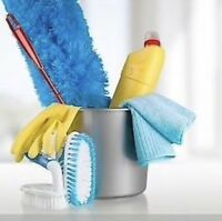 Detailed Housecleaning by Francine's Clean
