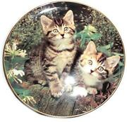 Danbury Mint Cat Plates