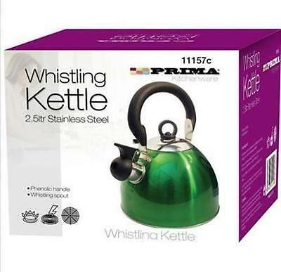 2.5L METALIC GREEN S / STEEL WHISTLING KETTLE IN-OUT DOOR CORDLES KETTLE NEW