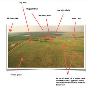 Farms & Land For Sale near Dunmore Medicine Hat