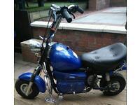 Battery operated hog bike