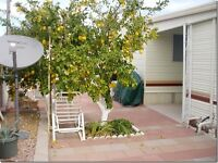 For Rent in Mesa