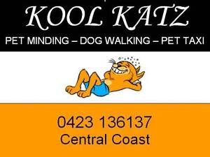 Kool Katz Pet Minding Kincumber Gosford Area Preview