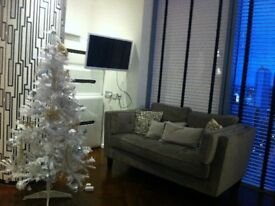 Luxury fully furnished one bedroom apartment