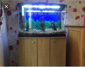 Marina 60 litre fish tank
