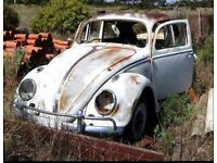 Wanted - Vw Beetle project car