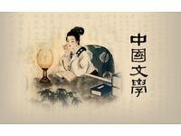 Classes for beginner learning Chinese Mandarine