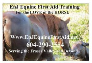 Emergency Equine First Aid Training Clinic