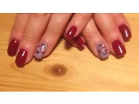 £20 Gel Manicure including Nail Art. Find me on facebook. search nailniche