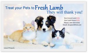 ~*~FRESH Frozen Raw Lamb for your Pet